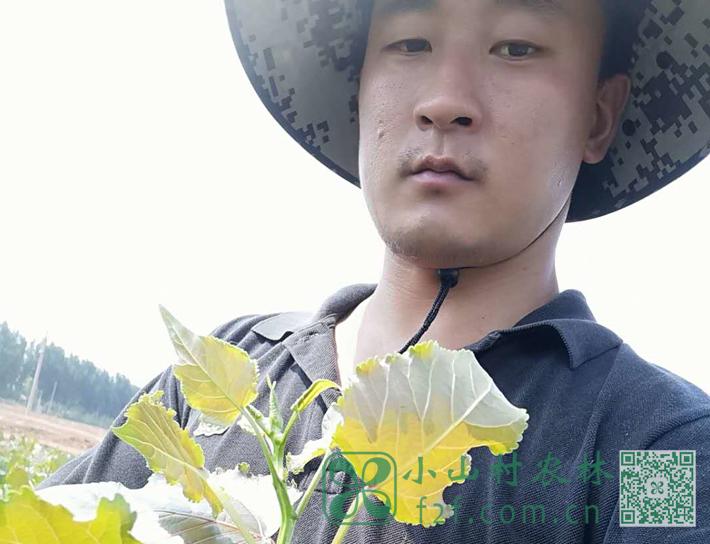 小孔:这时代难得的务农青年