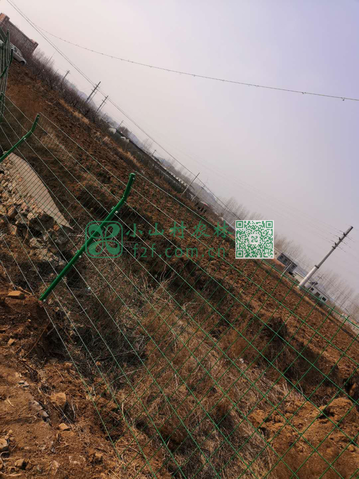 第一遍土地深耕后仍旧是遍地板结的土坷垃,被冲刷过度的沟壑仍旧不利于耕种。