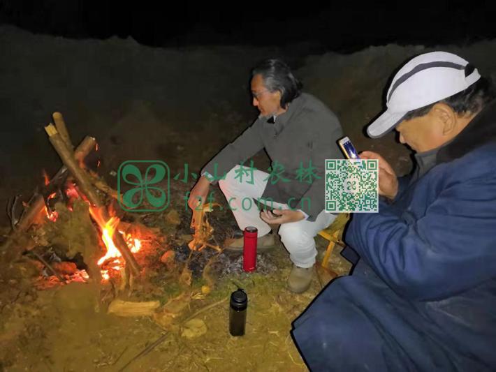 土豆种植的季节很早,俺们都还穿着棉衣,有时晚上观察土豆苗生长还不得不烤火取暖呢。