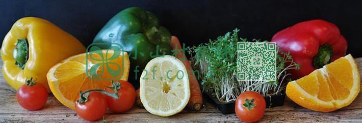 植物性硒元素吸收转化的食物伙伴