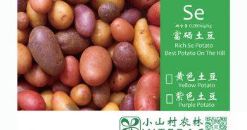 富硒土豆包装箱标签设计