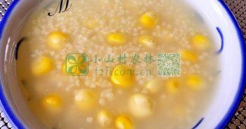 小米玉米粥图片