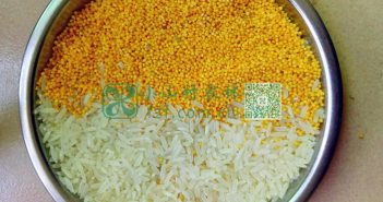 小米大米图片