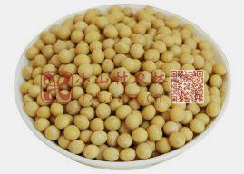 中国1-5月进口大豆3388.3万吨  6月和7月还将激增
