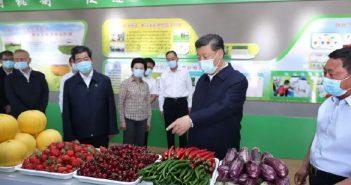 习近平农业要节水化图片