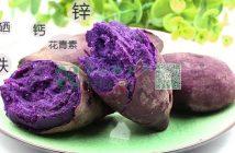 有机紫薯图片