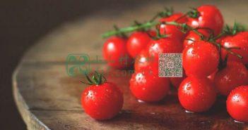 西红柿图片