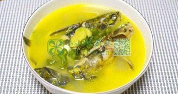 黄骨鱼图片